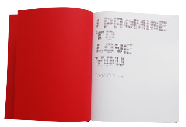 Ipromise_02